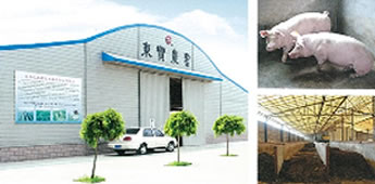 LONGKOU AGRICULTURE SICENCE AND TECHNOLOGY CO.,LTD.